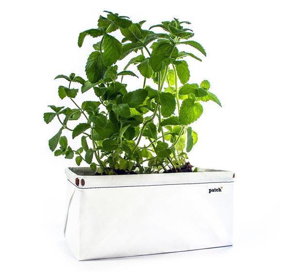 patch_herb_planter-single