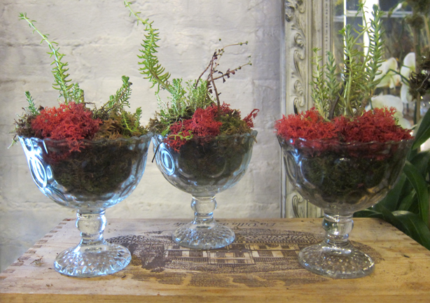 terrain-pa-glass-planters