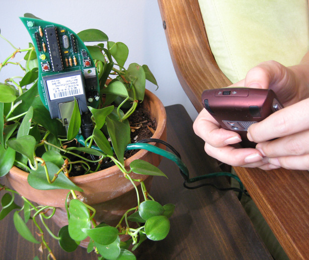 botanicalls-with-phone-urbangardensweb