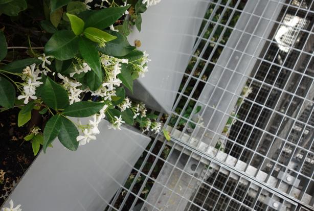 green-side-wall-jardi-tarradellas-interior-metal-grid-urbangardensweb