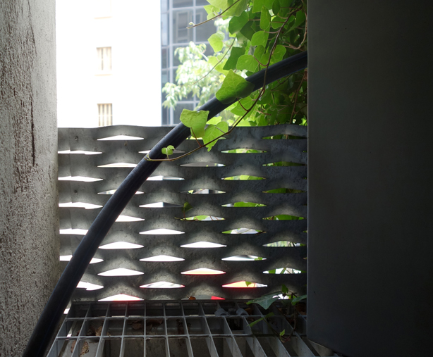 jardi-tarradellas-green-side-wall-barcelona-inside-out-urbangardensweb