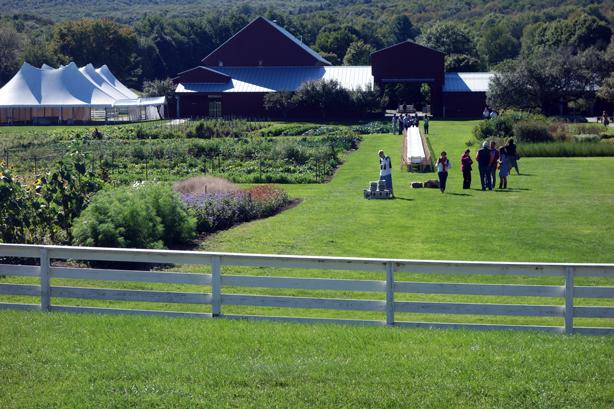 oif-view-from-barn-urbangardensweb