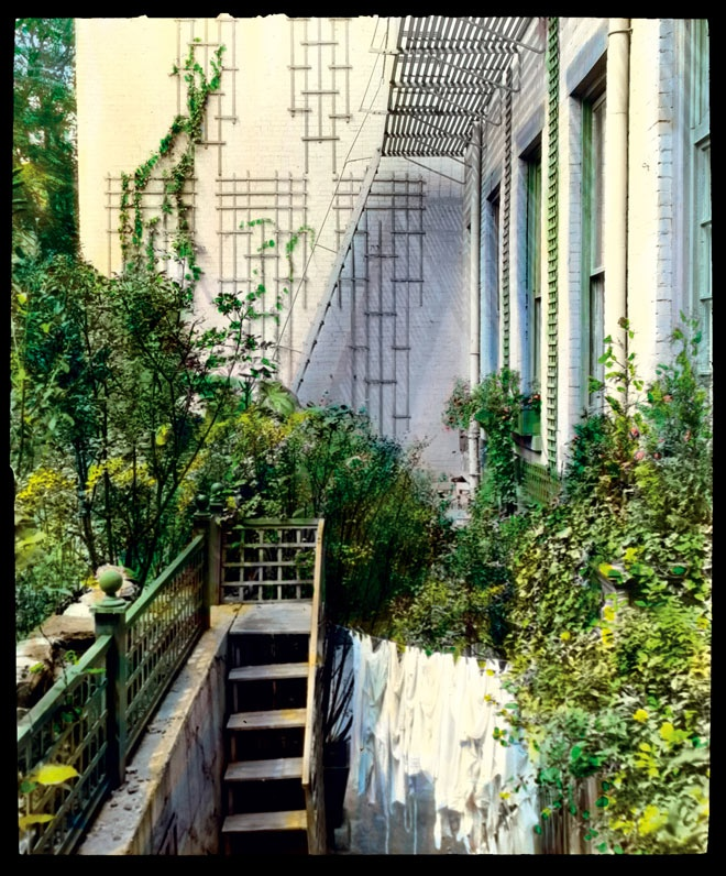 refresh-and-rejuvinate-your-urban-garden-in-2014