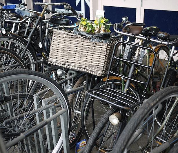 guerrilla-gardening-by-bicycle-guerrilla-gardens-at-dutch-train-station
