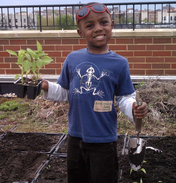 intervale-rooftop-urban-farm-young-farmer