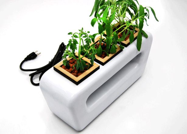 Designer-Tabletop-Hydroponic-Planter-hydropod