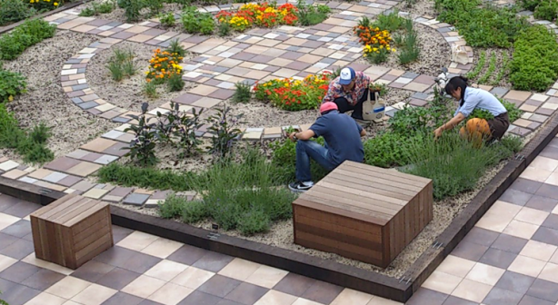 Soradofarm makes rooftop gardens at Japanese train stations.
