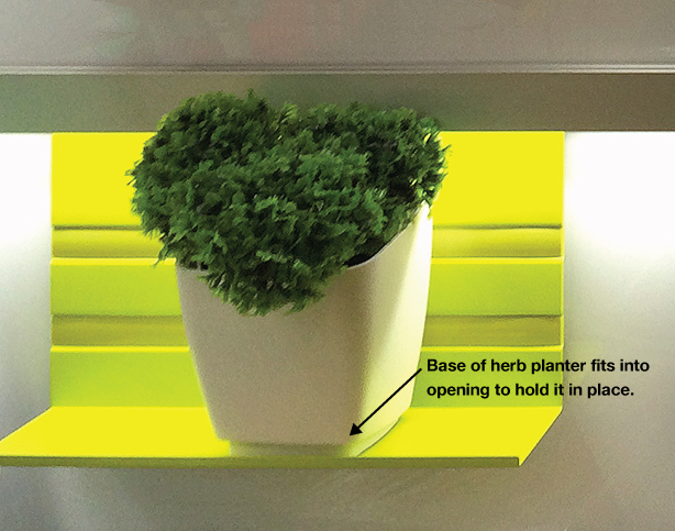 clevver-storage-planter-in-base-on-shelf