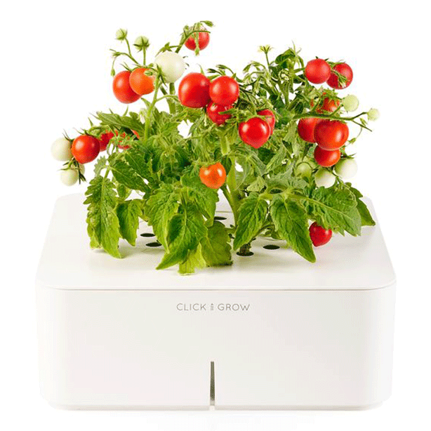 click-and-grow-aeroponic-garden