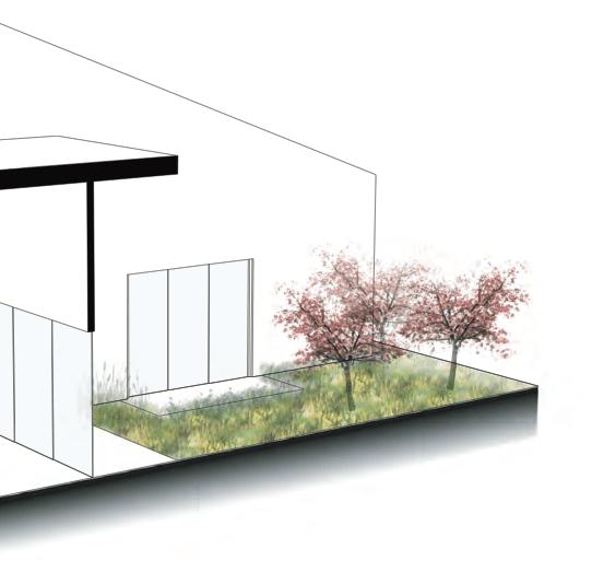 house-of-future-2020-garden