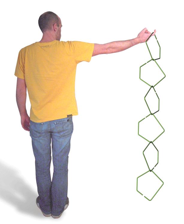 malphettes-holding-trellis-part