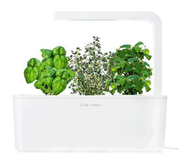 Smart-Herb-Garden-click-and-grow-urbangardensweb
