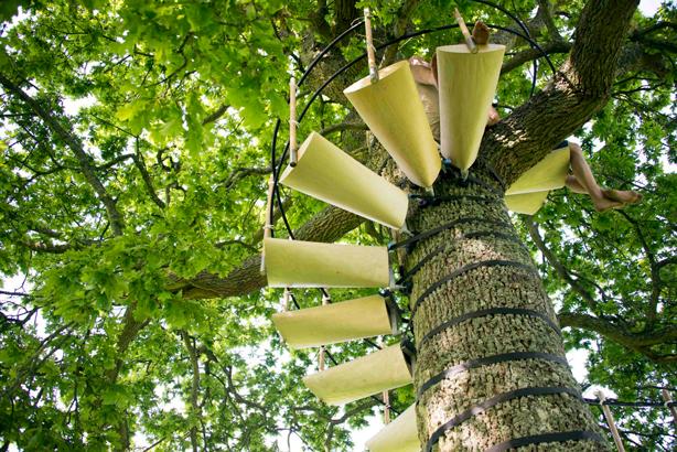 canopystair-steps-urbangardensweb