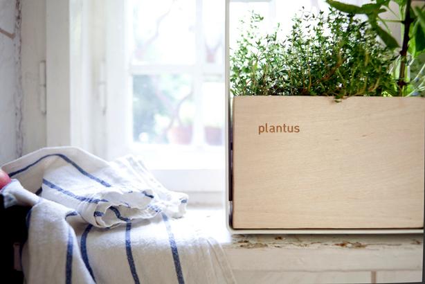 plantus-planter
