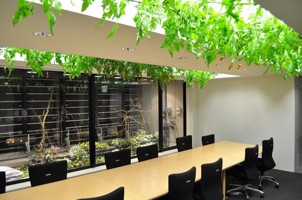 pasona-tokyo-urban-farm-conference-room-urbangardensweb