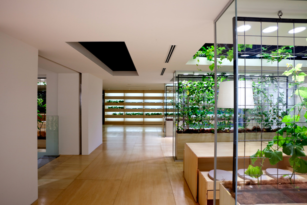pasona-urban-farm-indoor-office-farm-urbangardensweb