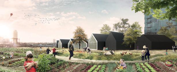 Urban Farm and Nursery School