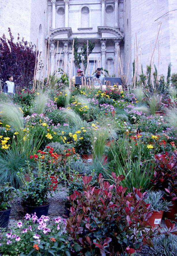 lymbus_vert-temp-de-flors_urbangardensweb
