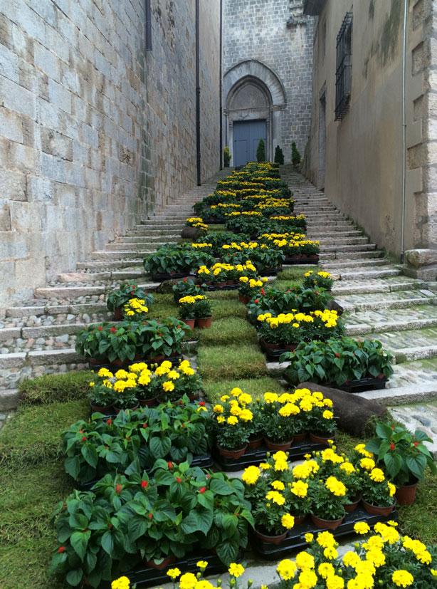 temps-de-flors-flowers-climbing-steps-urbangardensweb