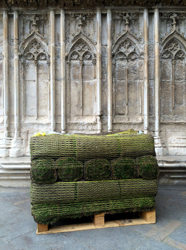 temps-de-flors-sod-rolls-cathedral-urbangardensweb