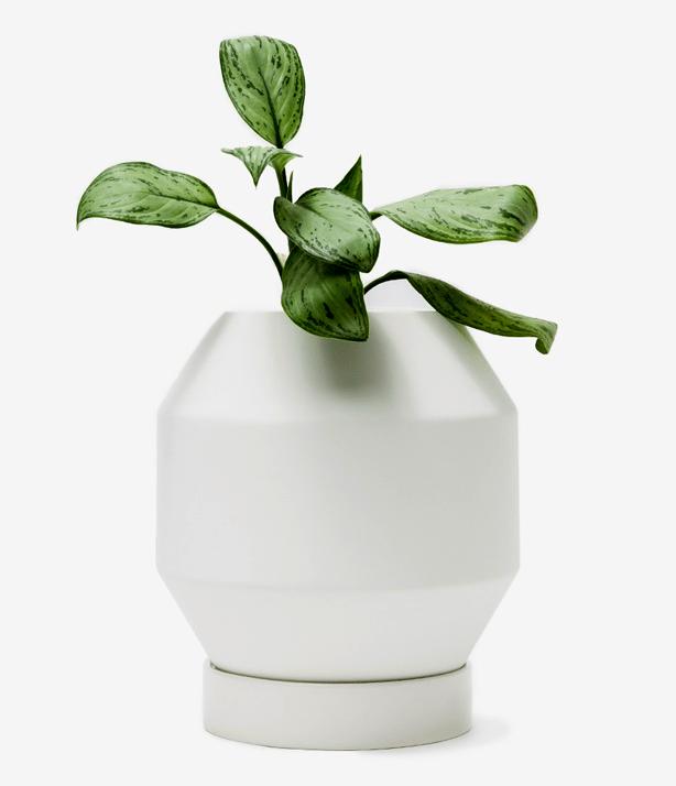 needsupply-vessel-planter-urbangardensweb