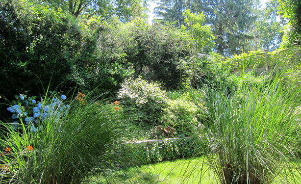 Connecticut-house-and-garden-makeover-ornamental-grasses-robin-plaskoff-horton-urbangardensweb