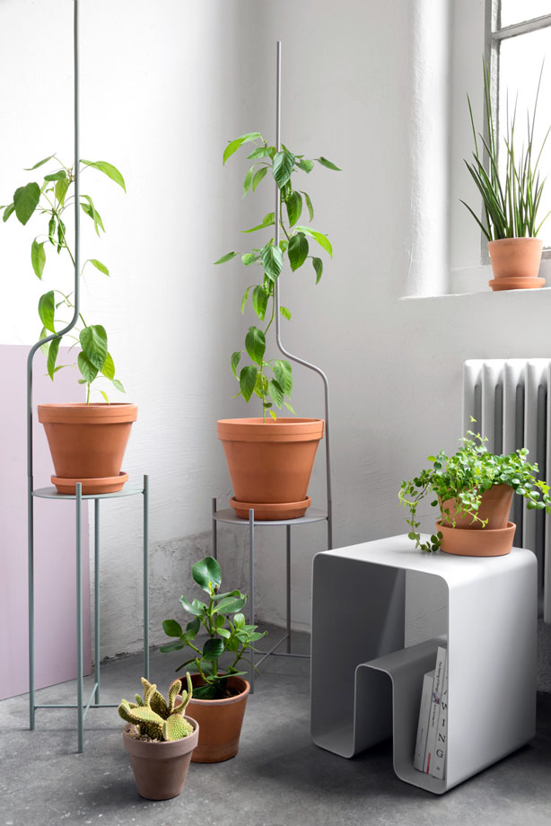 liana_plant-stand-and-supports-grow-with-your-plants-urbangardensweb