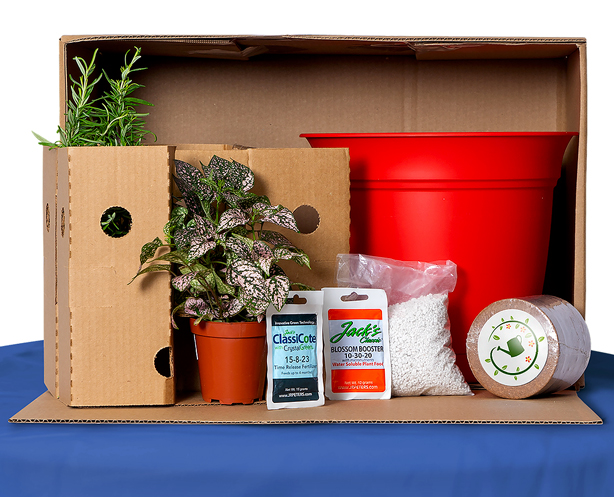 plant_package_easy_container_garden_subscription_box_urbangardensweb
