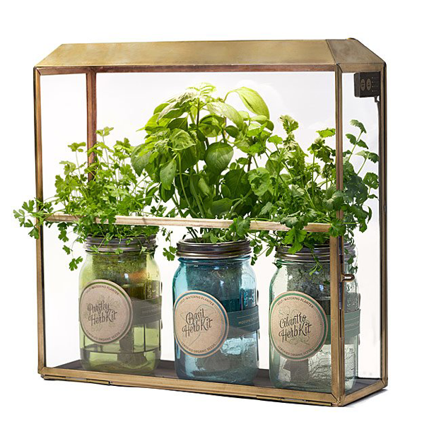 urban_gardens_mothers_day_gifts_for_gardeners_smart_antiqued_brass_growbox_terrarium