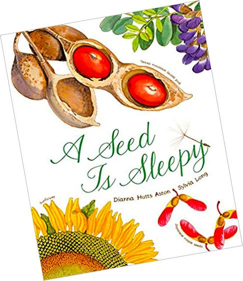 seed_is_sleepy_kids_botany_educational_book