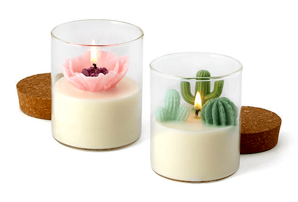 botanical_scented_succulent_tea_candles_gift_set