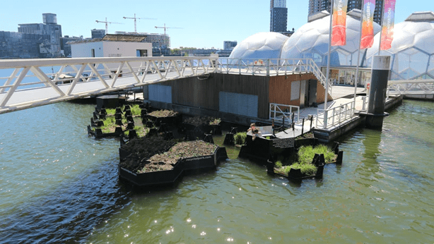 Floating park made entirely of recycled plastic debris.