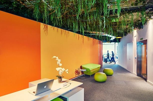 biophilic-workplace-design-green-planted-ceiling