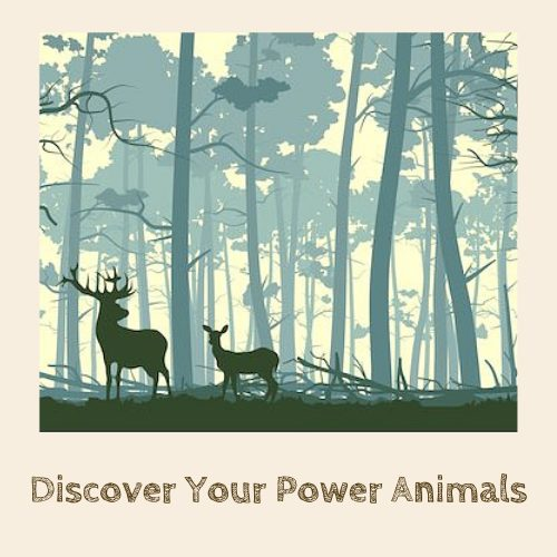 Discover Your Power Animals