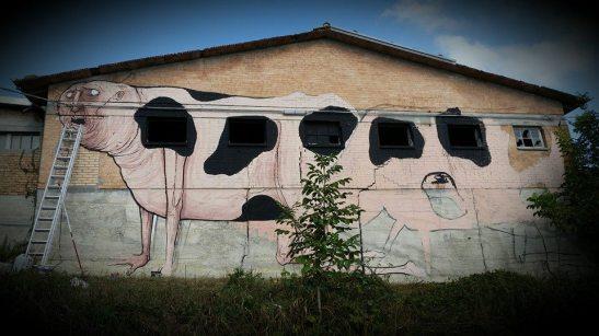 Nemos-vendriato-Italy-2
