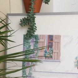 Urban Jungle Bloggers: Plants & Art