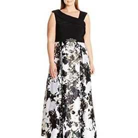Printed Ball Gown Skirt Dress