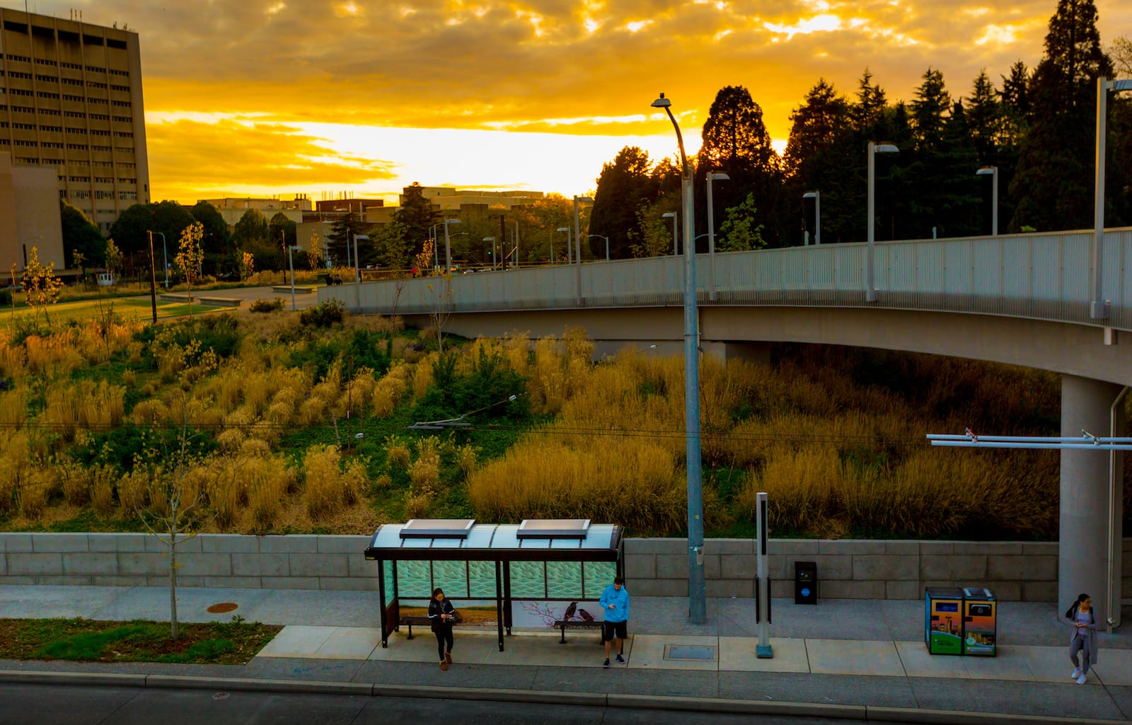 Solar lighting Urban Solar bus stops in Seattle