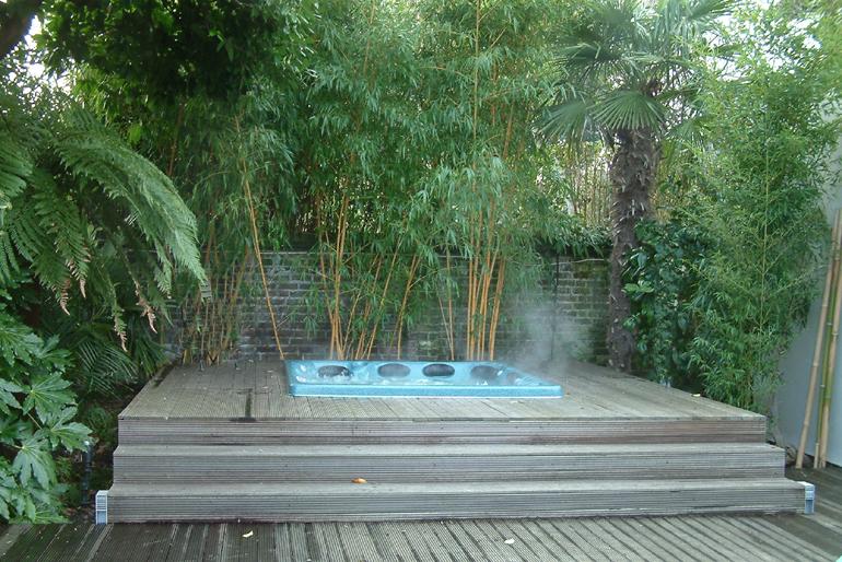 Sub Tropical Garden Design London Urban Tropics