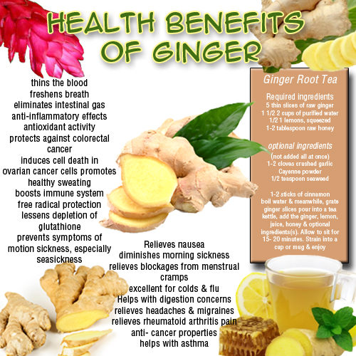 Image Result For Is Green Tea Good For Health And Weight Loss