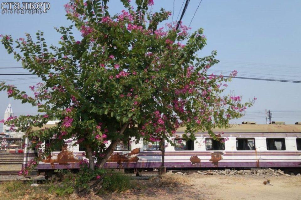 Around Thailand by Train