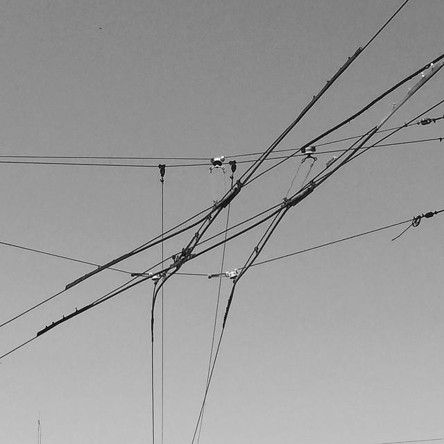"""""""Cruce de cables"""", por Raúl Urbina"""