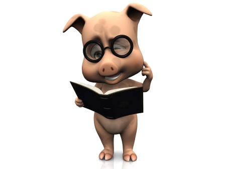 Confused, bespectacled cartoon pig ponders a book