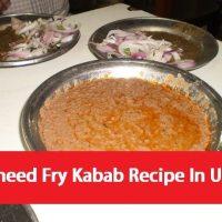 Waheed Fry Kabab Recipe In Urdu