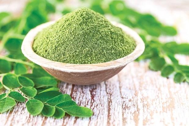 Moringa Health Benefits in Urdu