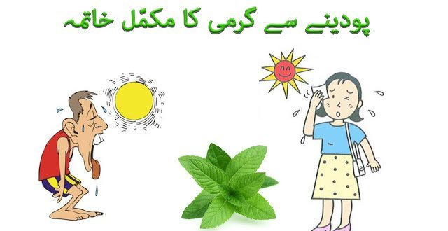 How to Reduce Body Heat in urdu and hindi by mint