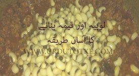 keema lobia recipe in hindi and urdu