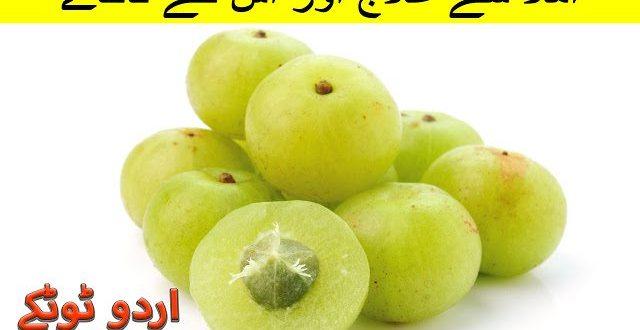 Amla benefits and uses in urdu and hindi