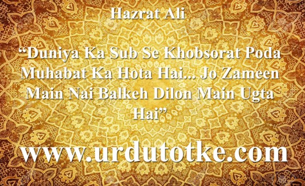hazrat ali quotes in roman urdu