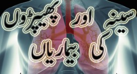 chest disease solutions in urdu
